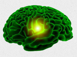 Reclaiming the Window of the Soul – De-Fluoridating the Pineal