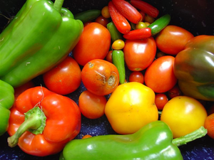Fresh vegetables are important components of a...