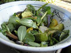 Purlsane Salad
